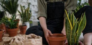Co należy wiedzieć o ogrodzeniach ażurowych?